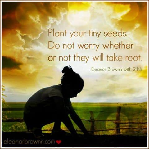 Inspiration - Plant your seeds they will grow - jumping in