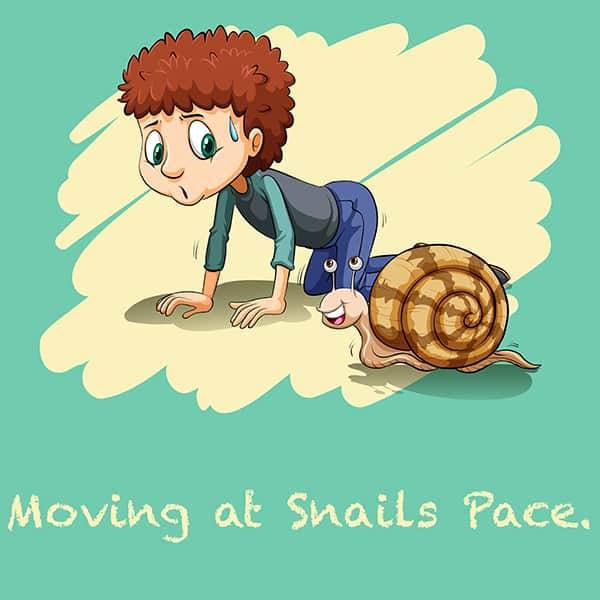 Website Moving at a Snails Pace